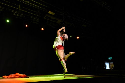 Jade performer category WAPC 2018